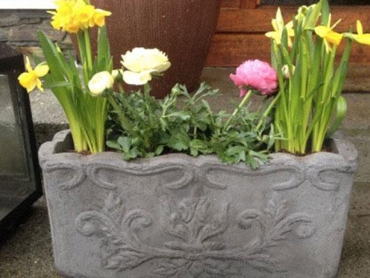 FINT TIL PÅSKE: Her har jeg blandet Påskeliljer og Ranukel. Enkelt og fint å ha på trappen til påske.