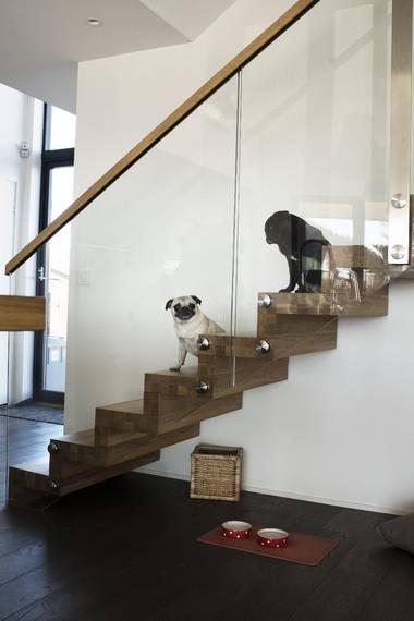 VENNER: Happy er hunden til familien, mens My tilhører arkitekten. FOTO: Elias Dahlen