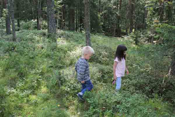 INTERIØRJAKT: Ta med deg familien ut i skogen, barna finner lett mange skatter som du kan dekorere med hjemme. FOTO: Stina Andersen / Fru Andersen