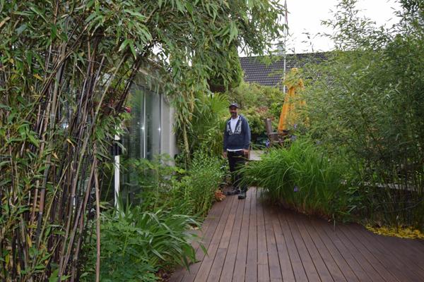 RIKT UTVALG: Til venstre er det sort bambus, iris og liljer. På høyre side er det sølvpil og blå iris. FOTO: Elisabeth Heggland Urø