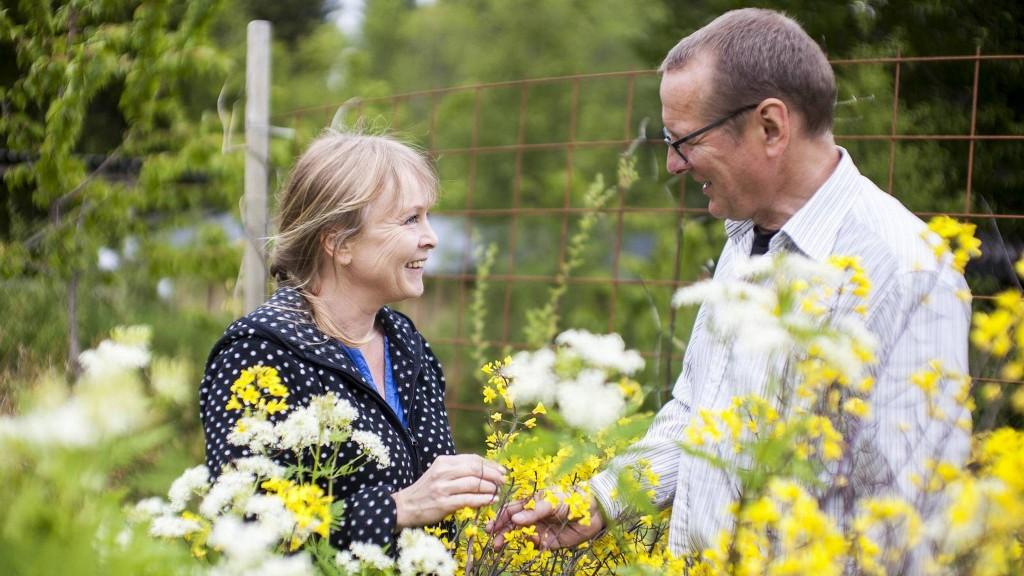 MATSIRKELEN: Linda Fossen og Øyvind Horvei har laget en sirkel av ulike planter på plenen. De kaller den for matsirkelen, for her kan nesten alt spises. FOTO: INGVILD FESTERVOLL MELIEN