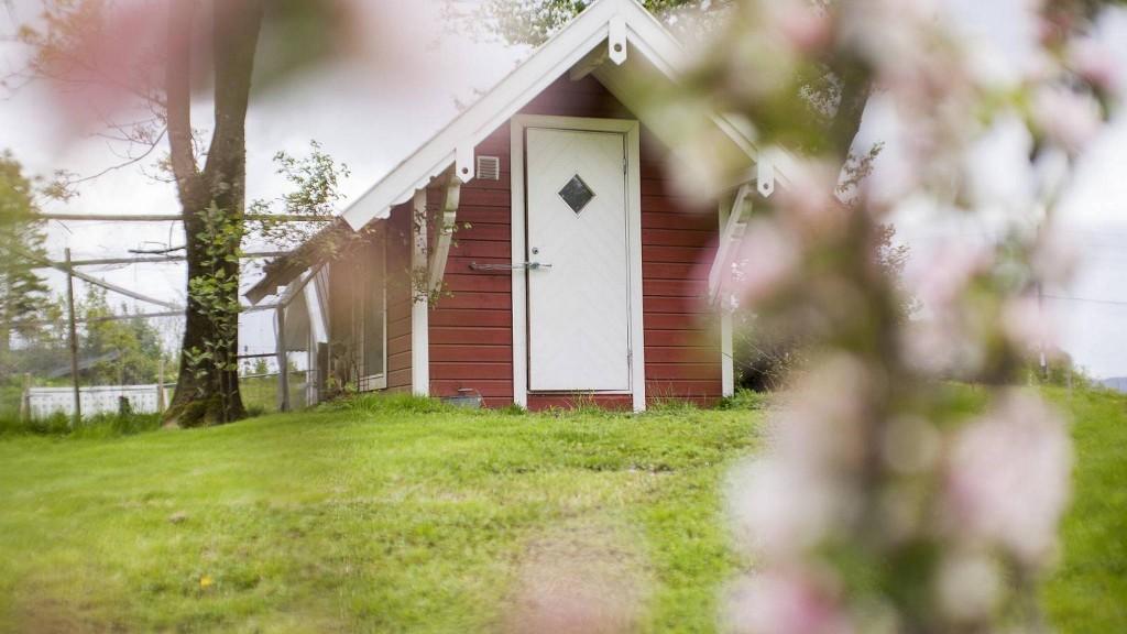 LANDLIG: Fra småhuset ser man rett ut i det grønne og her er det fuglene som vekker deg om morgenen. FOTO: INGVILD FESTERVOLL MELIEN