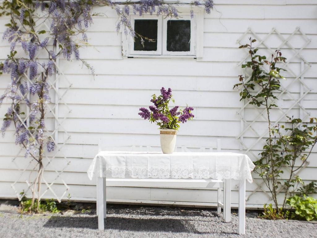 FAVORITTVEGGEN: Planten som snor seg oppover veggen på småhuset kalles blåregn. Det egentlige navnet er Wisteria. FOTO: INGVILD FESTERVOLL MELIEN